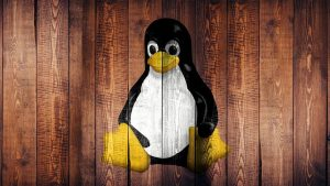 Reasons Why You Need to Choose Linux