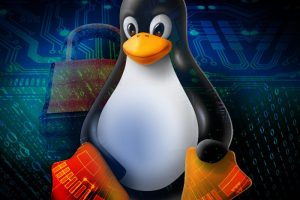 Secret Tips and Tricks in Linux You Need to Know